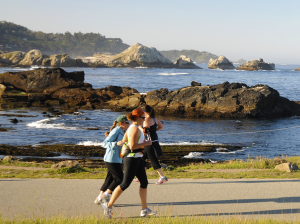 The 12k Is An Out And Back Course From Marathon Finish That Includes A Loop Through Beautiful Point Lobos State Natural Reserve
